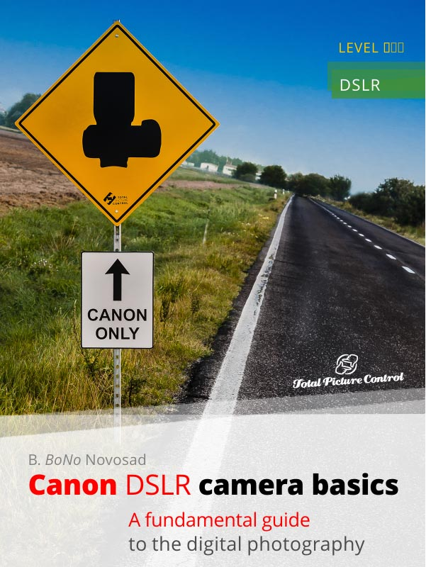 Canon DSLR camera basics A fundamental guide to the digital photography