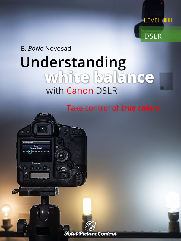 Understanding white balance with Canon DSLR Take control of true colors
