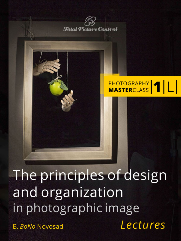 The principles of design and organization in photographic image Photography MasterClass I. (Lectures)
