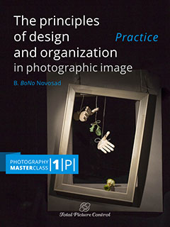 The principles of design and organization in photographic image Photography MasterClass I. (Practice)